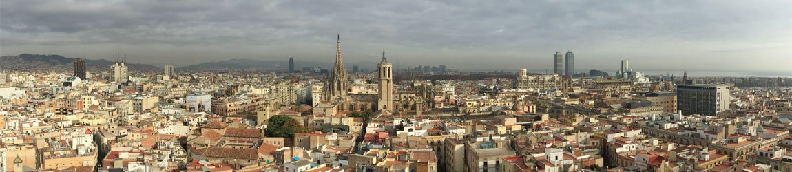Private Tours Barcelona - Cathedral and Gothic Quarter Panoramic